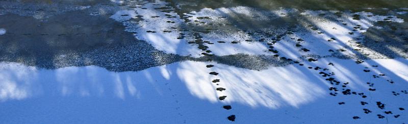 Ice prints