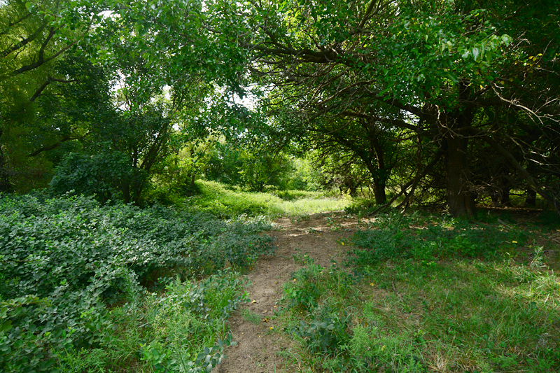 Nature preserve