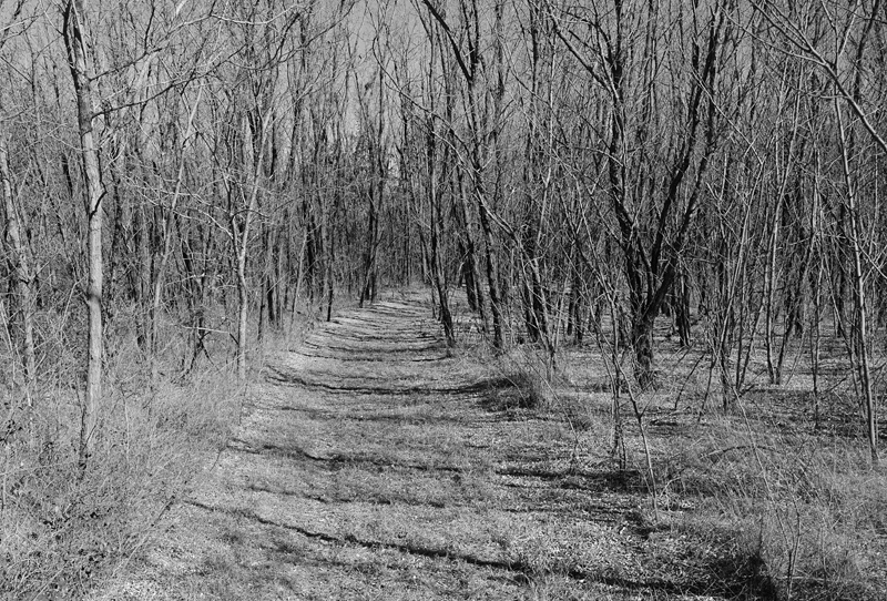 gray path