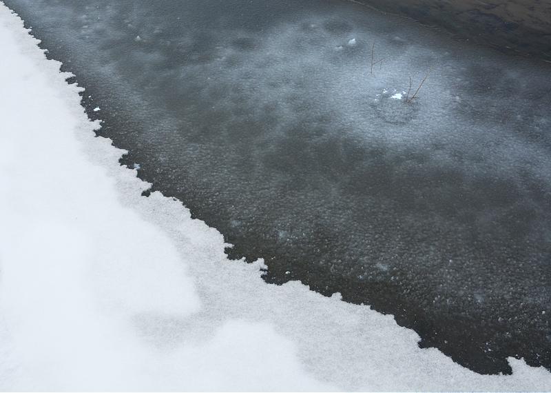 icyshore