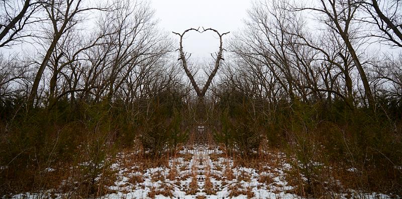 hearttree-0111
