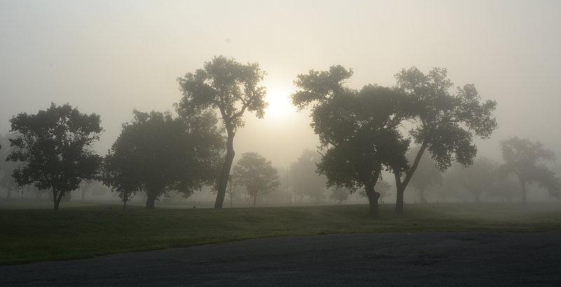foggysunrise2