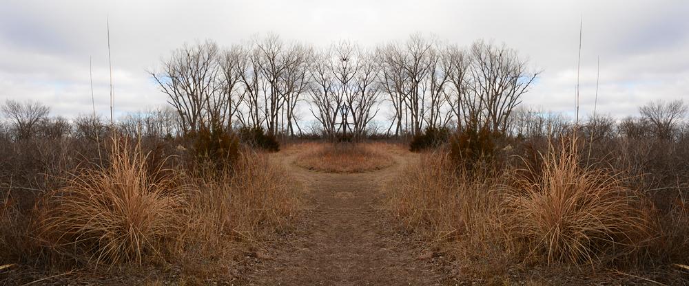 0109-circlegrove