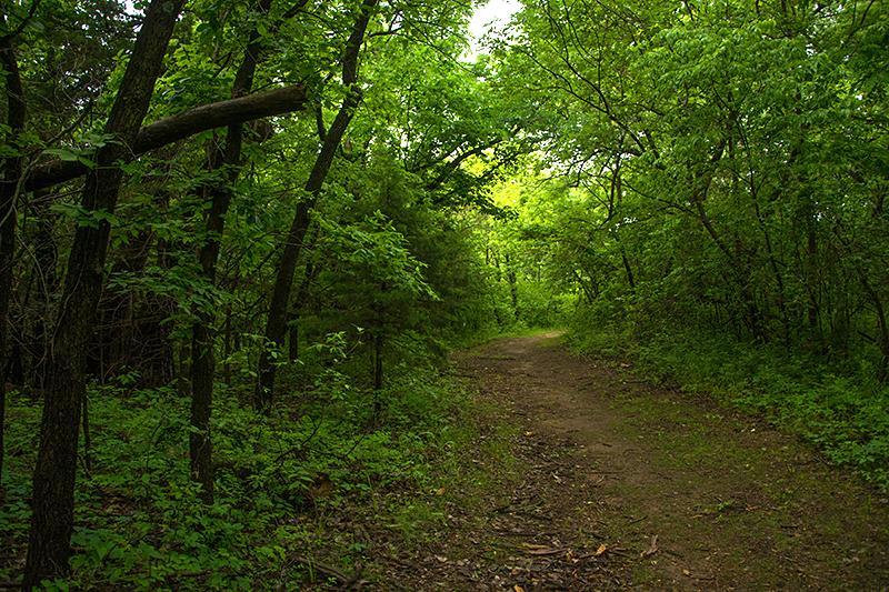 20160516-trail