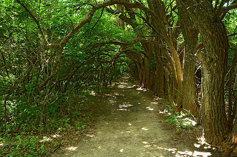 Great Plains Nature Center, Wichita