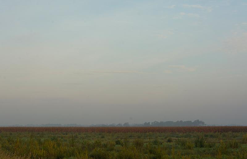 20160915-foggyfield